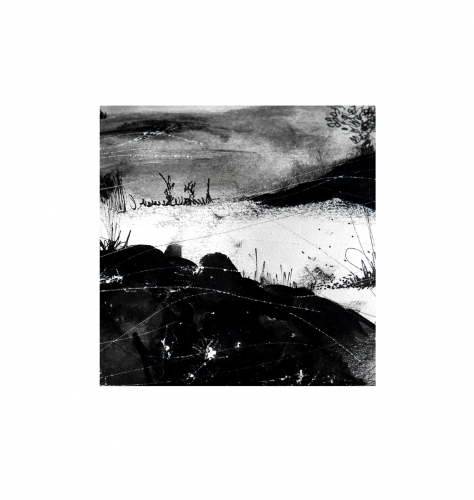 dessin, illustration, noir, blanc, paysage, encre, chine