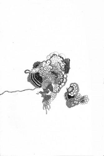 cellules.jpg
